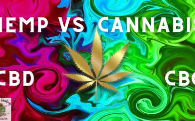 HEMP VS CANNABIS: WHAT'S THE DIFFERENCE? And what is CBG and CBC?